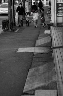 IMGP1955-1102-ps.jpg