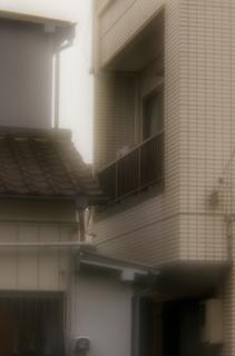 IMGP2501-0511cl-ps.jpg